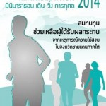 Central Group Mini Marathon 2014